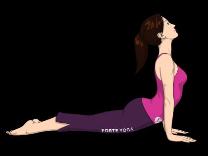 Upward Facing Dog Yoga Pose