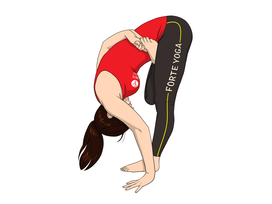 Bound Half Lotus Forward Bend Yoga Pose Forte Yoga