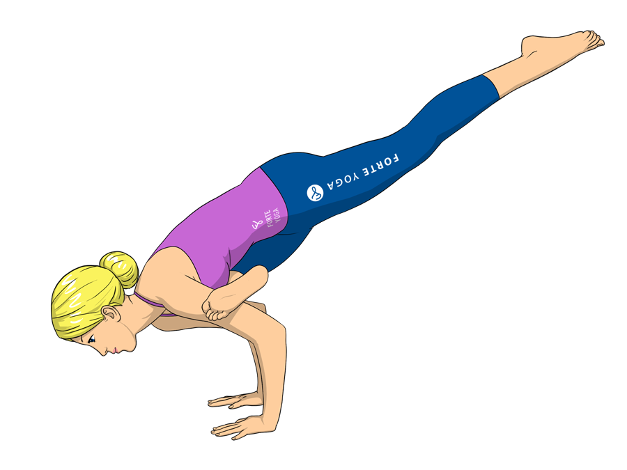 Flying Crow Yoga Pose - Forte Yoga