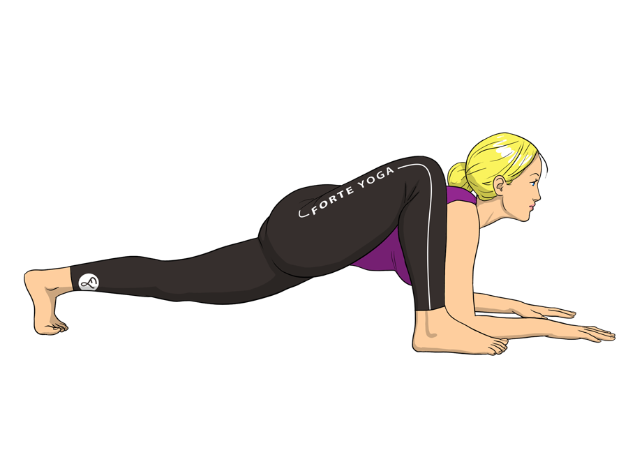 Lizard Yoga Pose is a standing pose that targets the quads and ...
