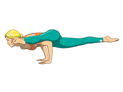 One Legged Arm Balance Yoga Pose