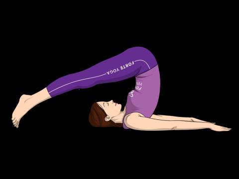 Plow Yoga Pose