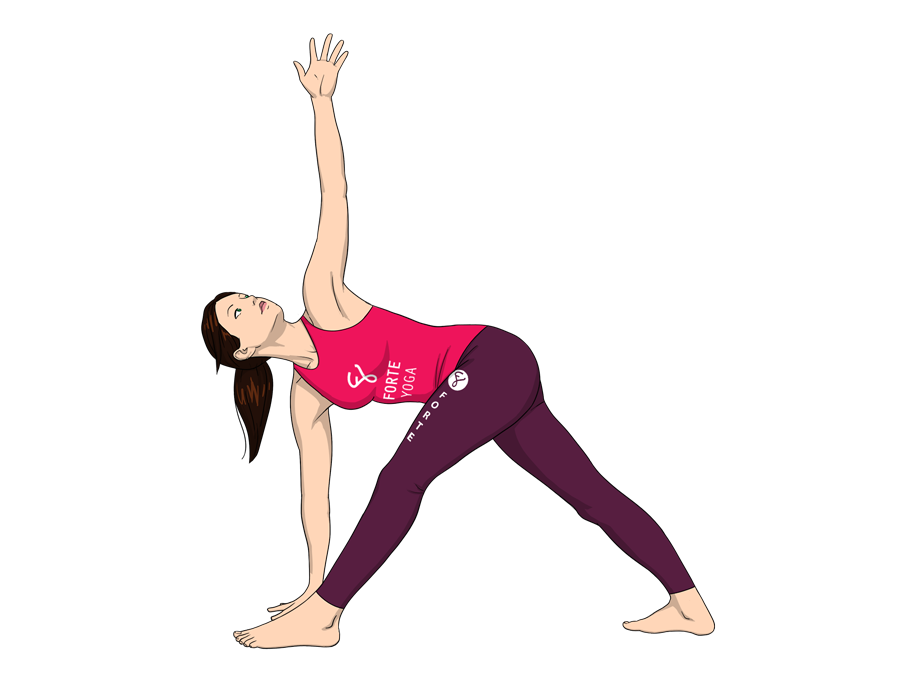 Revolved Triangle Yoga Pose - Forte Yoga