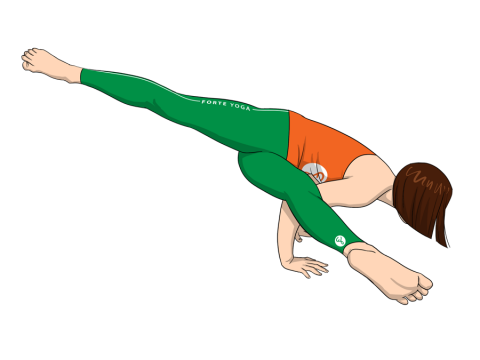 Twisted One Legged Arm Balance Yoga Pose