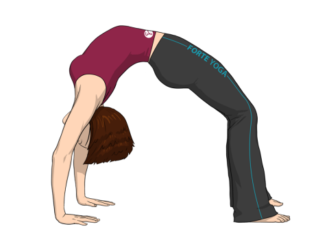 Upward Bow Yoga Pose