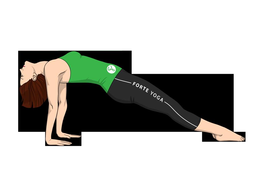 upward plank yoga pose forte yoga