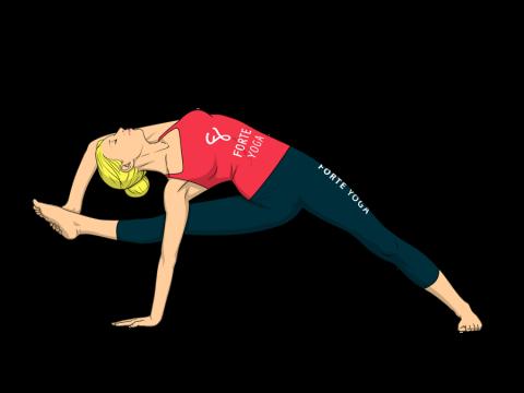 Visvamitra's Yoga Pose